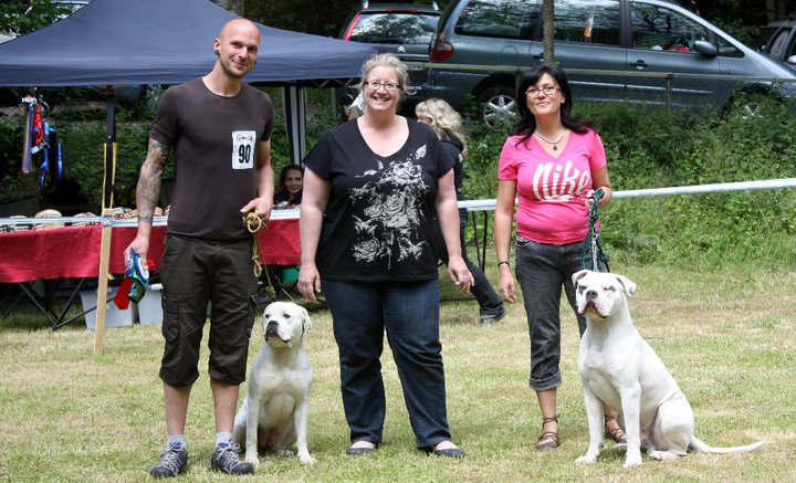 judge and competitors at an american bulldog show in germany